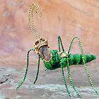 Freaky Bug by Robin Fortin IPA