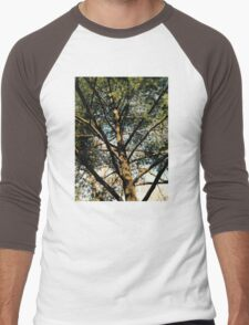 Pine Tree in Central Park NYC Men's Baseball ¾ T-Shirt