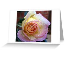 Sugar Pink Greeting Card