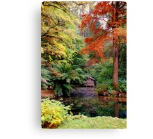 Autumn Colours 2 Canvas Print
