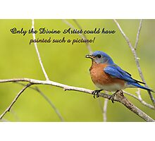 Only the Divine Artist could have painted such a picture . . . Photographic Print