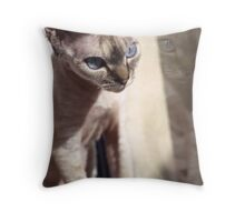 Hilda - 3 Throw Pillow