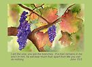 The True Vine - John 15:5 by Diane Hall