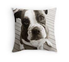 Dakota - 2 Throw Pillow