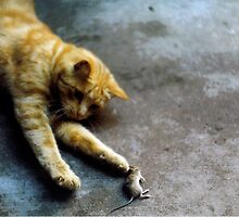 Tom and Jerry by Kirill