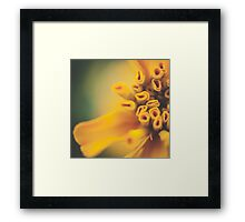 Yellow Tubes Framed Print