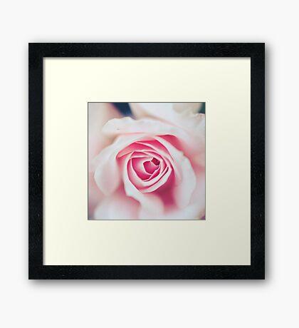 Pink Vortex Framed Print