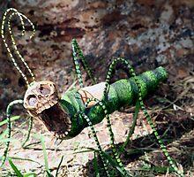 Freaky Bug 2 by Robin Fortin IPA