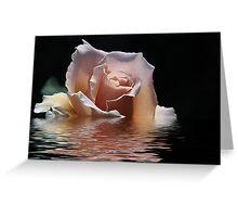 water rose Greeting Card
