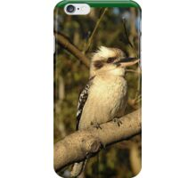 Kookaburra, Saint Leonards, Australia 2005 iPhone Case/Skin