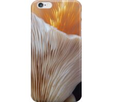 Oysters in Winter iPhone Case/Skin