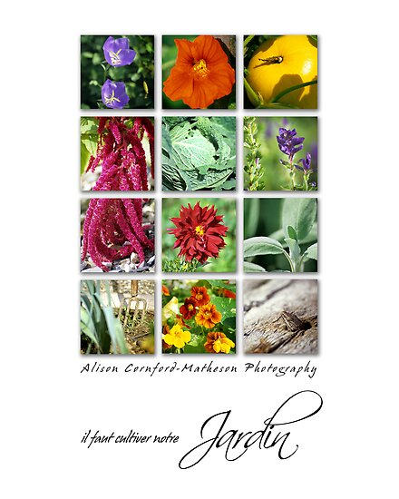 Jardin by Alison Cornford-Matheson