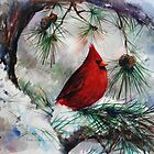 Winter Cardinal by Eva C. Crawford