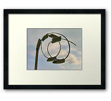 Curly Joss Stick Framed Print