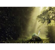 The Sword in the Stone Photographic Print