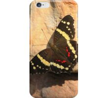 Banded Peacock Butterfly (Anartia Fatima) iPhone Case/Skin
