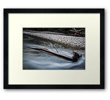 Downed Tree in the Ohanapecosh River Framed Print