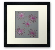 Starry Pinks Framed Print