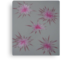 Starry Pinks Canvas Print