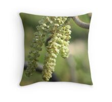 First Catkins of Spring Throw Pillow