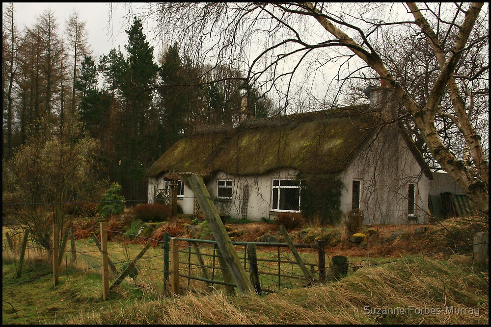Fairytale Cottage by Suzanne Forbes-Murray