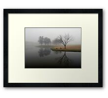 Two Geese Reflect Framed Print