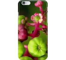 Poke Flower Changing To Berries iPhone Case/Skin