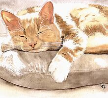 Cat Nap by Yvonne Carter