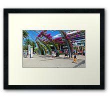 Viticetum Framed Print