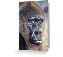 How's your day going?! Greeting Card