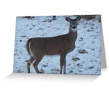 Snow Walker Greeting Card