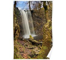 Whitfield Gill Force Waterfall Poster