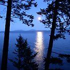 Flathead Moon by Ann Rodriquez