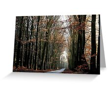 High beech-trees in late December Greeting Card
