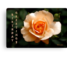 Birthday Greetings Rose Canvas Print