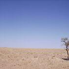 Lonely Tree by craigpeers9