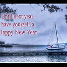 Until Next Year, Happy New Year by Owed to Nature