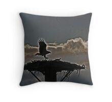 Osprey outlines Throw Pillow