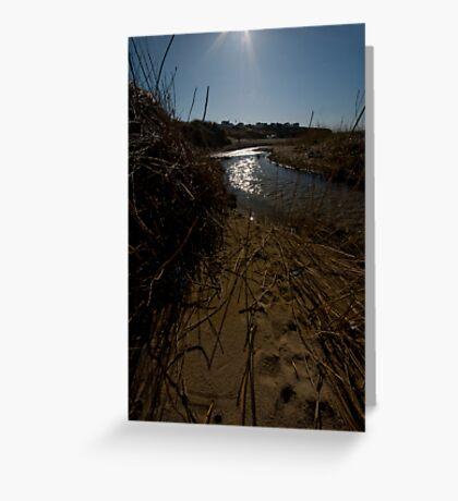 Through Golden Sands Greeting Card
