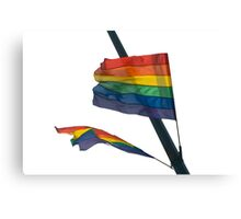 Gay Flag on white background Canvas Print