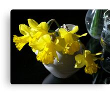 5 Daffodils All in a Row Canvas Print