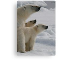 Three's Company! Canvas Print