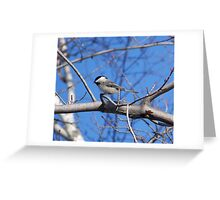 Chirp Chirp, a Morning Song For You... Greeting Card