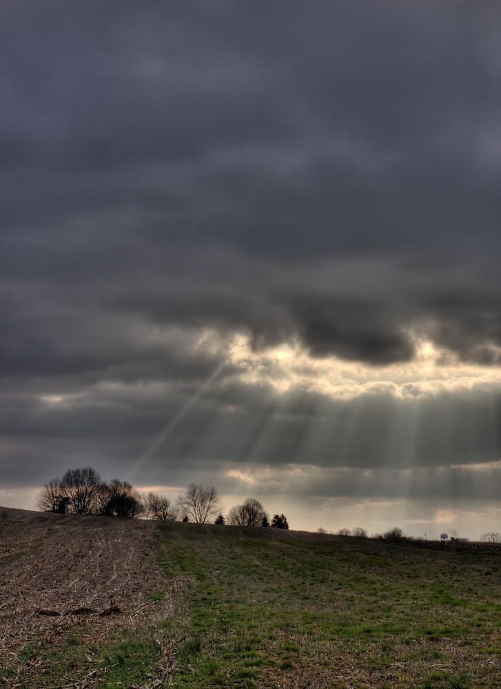 shining through by Adam Mattel