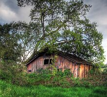Dilapidated Barn by Bailey Sampson
