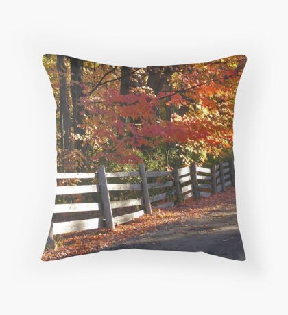 Rural Fence Throw Pillow