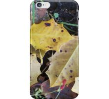 Fall Into Spring iPhone Case/Skin