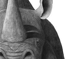 Black on White - Black Rhinoceros by Heather Ward