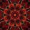 A Kaleidoscope Kraze (One Upload Per Day)