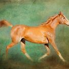 Chestnut Arabian Horse Trotting  by Michelle Wrighton